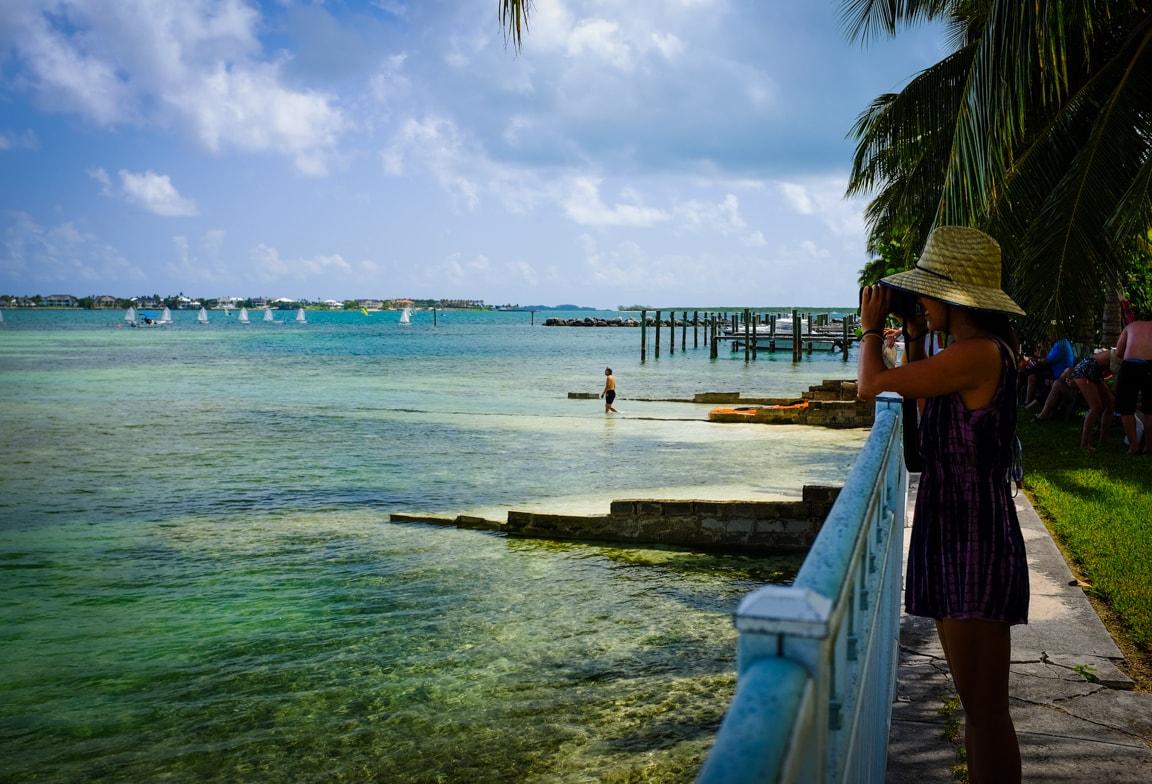 """""""Paradise"""" Nassau, 2016"""