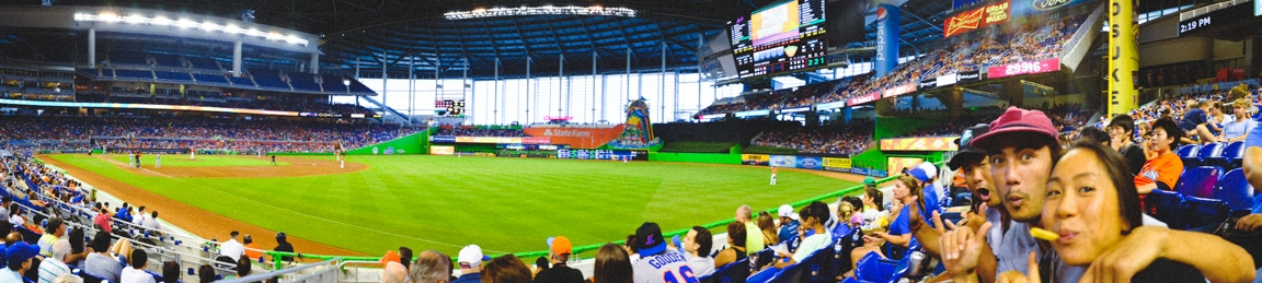 """Baseball Panorama"" Miami, 2016"