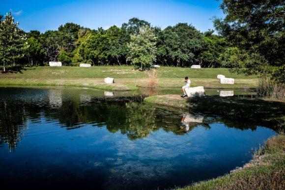 """""""Nearby Pond"""" Cedar Park, 2016"""