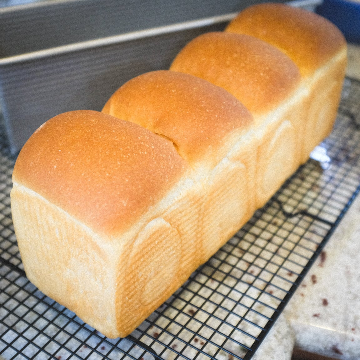 """Sandwich Loaf"" Cedar Park, 2016"