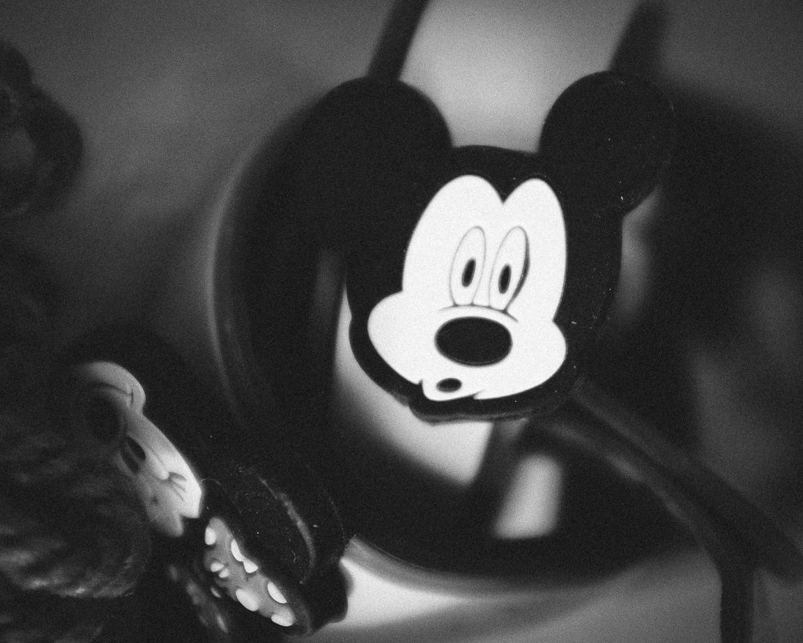 """Mickey"" Cedar Park, 2016"