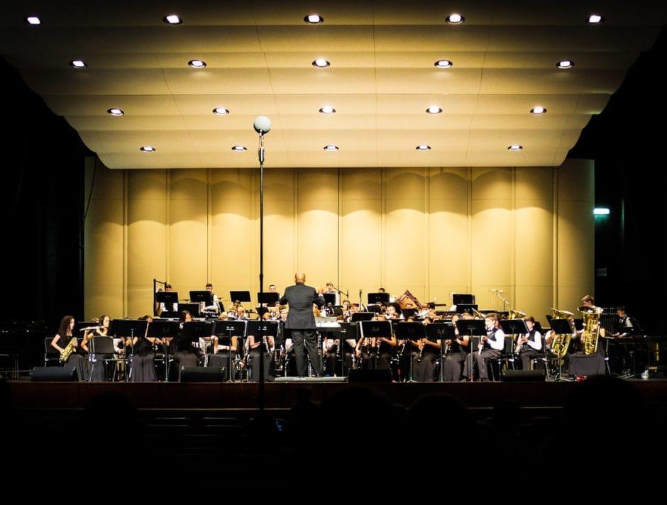 """Concert Time"" Cedar Park, 2016"