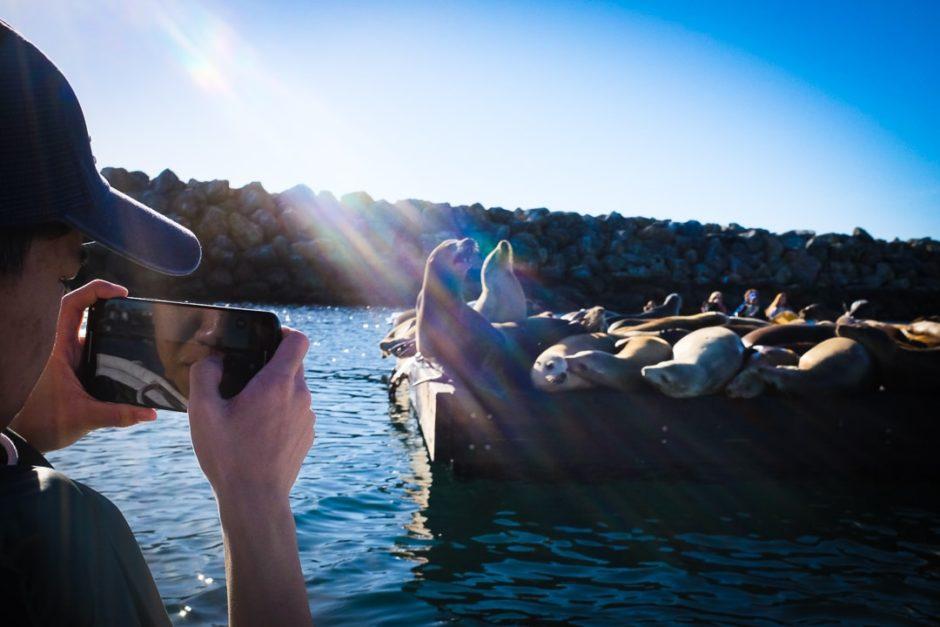 """Pedal Boat Adventure"" Redondo Beach 2016"