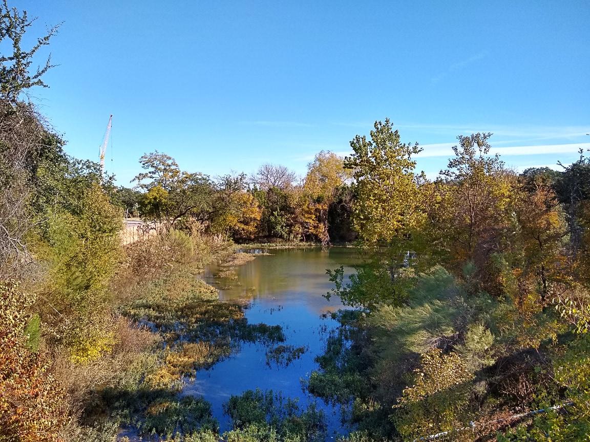 """""""Small Pond"""" Cedar Park, 2018"""