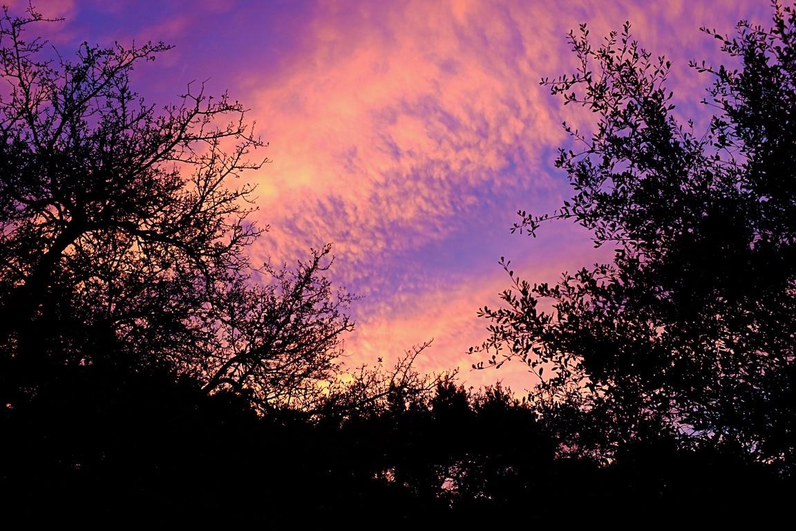 """""""Colorful Sky"""" Cedar Park, 2019"""