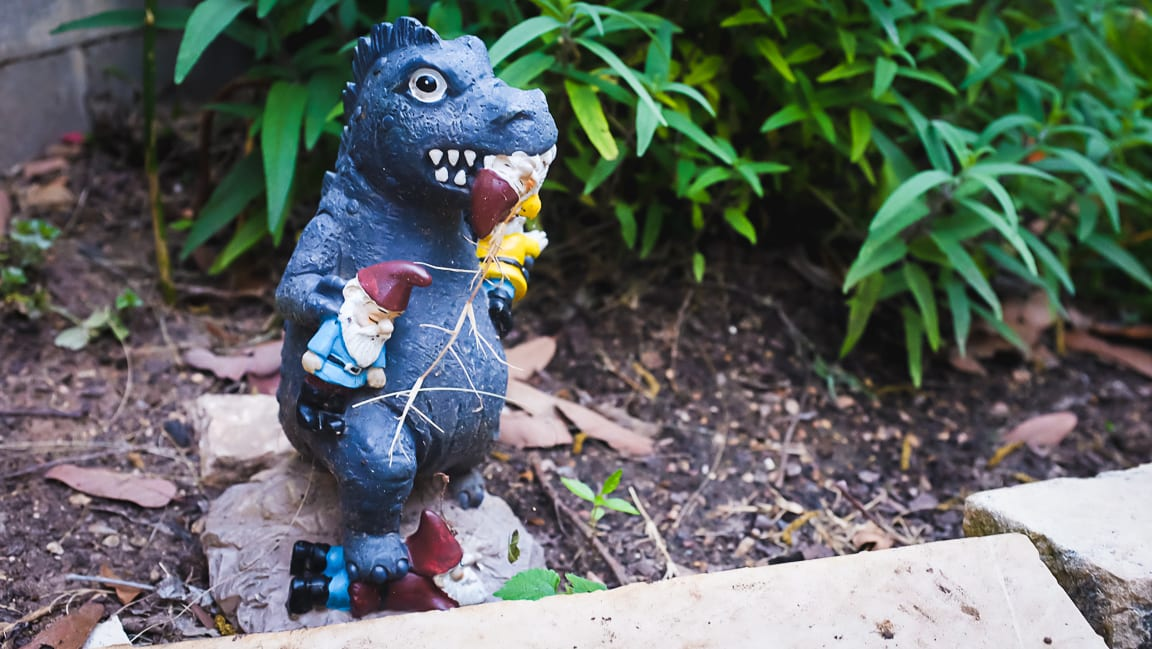 """Garden Godzilla"" Austin, 2019"