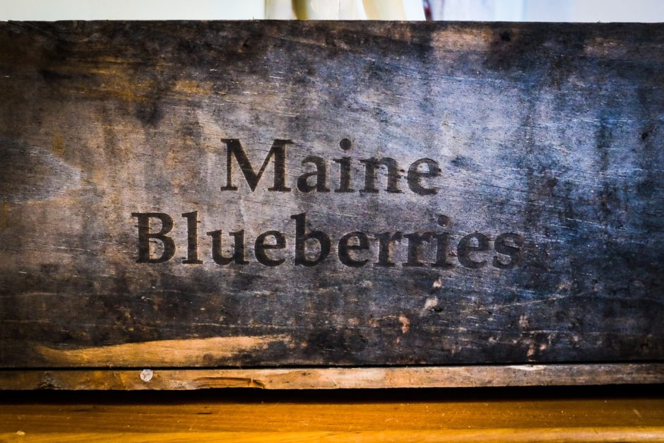"""Maine Blueberries"" Cedar Park, 2017"